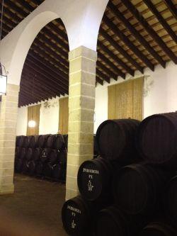Bodegas Tradicion - Jerez Abril 2012 (28)