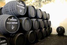 Bodegas Tradicion - Jerez Abril 2012 (6)