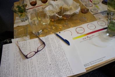 Cata Magistral con Blogueros Junio - 2014 (12)