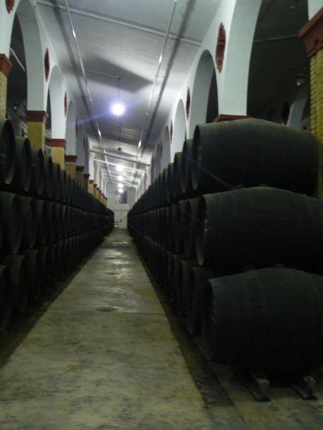 Jerez 2008 (55)