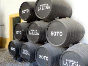 Jerez 2008 (84)