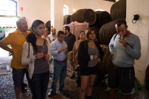 5 Bodegas Faustino - Sept-14 (11)