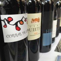 Dia del Vino Español (10)