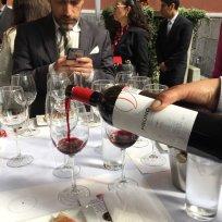 Dia del Vino Español (12)