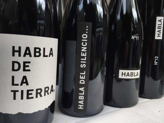 Dia del Vino Español (14)