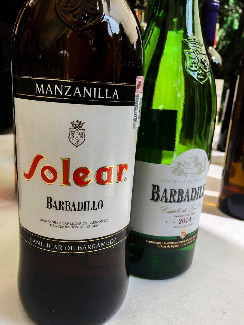 Dia del Vino Español (19)