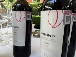 Dia del Vino Español (3)