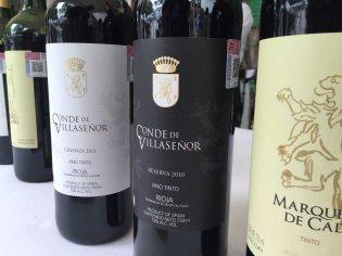 Dia del Vino Español (6)